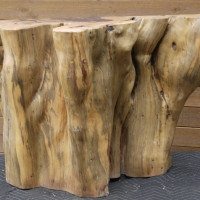 Tronc bois exotique tamarin - Exotic tamarin wood trunk