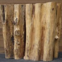 Tronc bois exotique tamarin - Exotic tamarin wood trunk - EspaceMosaik