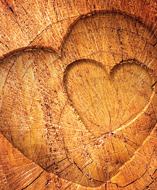 J'aime le bois