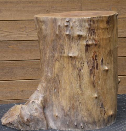 Tronc bois exotique – Exotic wood trunk