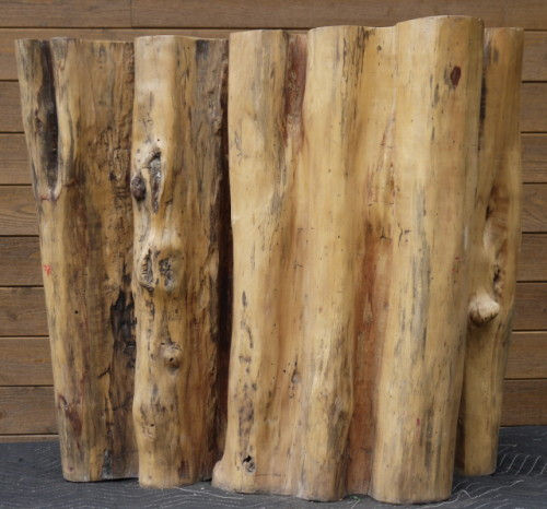 Tronc bois exotique tamarin – Exotic tamarin wood trunk