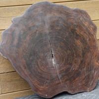 Tranche de bois exotique organique sono - Live edge exotic sono wood